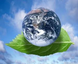 Environment Care