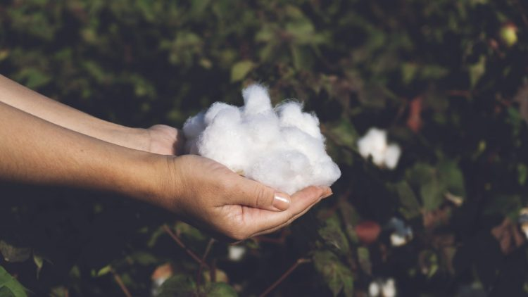 Eco-Friendly Clothing Materials: Recycled Cotton
